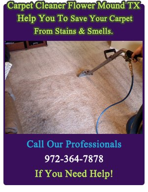 Professional Carpet Cleaners ...